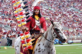 Florida State University Football Seminole Warrior