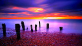 Colorful Sunset