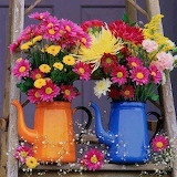 Bright jugs & flowers