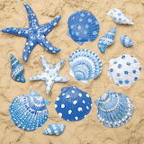 Blue and white shells