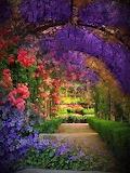 Floral Archways