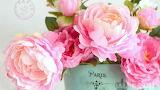 Flowers, peonies, pink, tin can, Paris