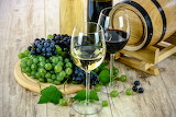 healthy food-grape & wine