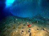 AntarcticOceanFloor
