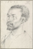 Head of an African by Albrecht Dürer