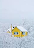 Winter wonderland1