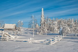 Winter Fence Snow 438562
