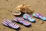 Flip Flops Still Life