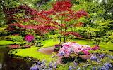 Traditional-Japanese-Garden-1080x675