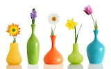 Colorful Flowers & Vases