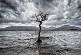 Loch Lomand - Scotland