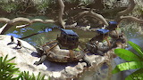 Turtle caravan