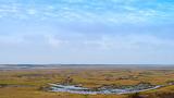 Landscape on Texel