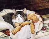 Cat and Teddy Bear by Shirley Deaville