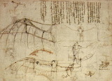 Leonardo Da Vinci flying machine