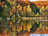 Jesień-foto -Patrycja Walczak