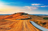 Golden Countryside, Tuscany