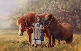 Little girl leads two horses