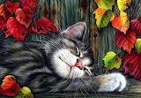 13d682a081df cat