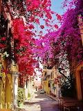 #Nafplio Greece