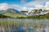 Ierland Binnenland Landschap