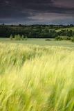 Landscape tumblr delicatuscii-wasbella102