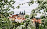 Весенняя Прага