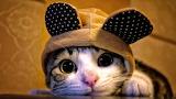 ☺♥ I'm all ears...☺☺☺