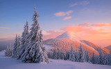 Carpathian-mountains-snow-winter-sunset-pine-trees