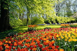 Spring_park