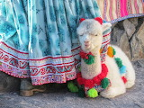 Peru-dress-detail-llama