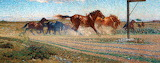 Freed Horses by Nils Kreuger 1906