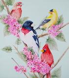 ~Songbirds~