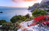 Sea, mountain, rocks, cliff, vegetation, nature, autumn