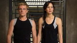 Peeta and katniss survived the Valentine's games:)