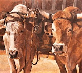 #Oxen With Yoke