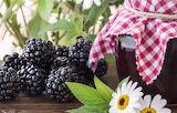 Rubus jam