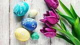 Easter - eggs - flowers - tulips