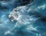 Cloud tiger