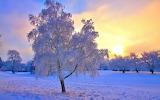 Mrozek zimowy