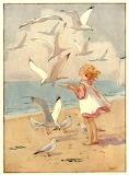 Seagulls ~ Margaret W. Tarrant