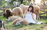 Girl, nature, sheep, Asian