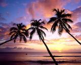 #Kings Beach West Indies
