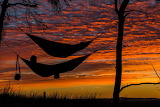 Sunset hammock