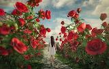 Au pays des fleurs géantes-fantaisie
