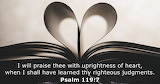 Psalm 119:1-16