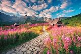 Tatra morning-by Karol Nienartowicz