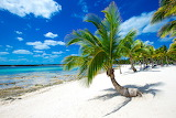 Tropics Coast Palma Sand 523816 1280x853