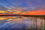 Everglades National Park, USA