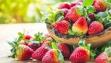 фрукты и ягоды 29